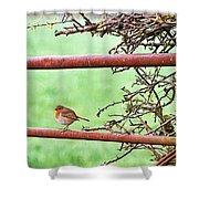 English Robin Shower Curtain