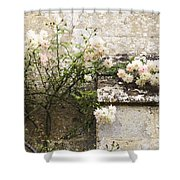 English Roses II Shower Curtain