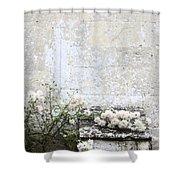 English Roses IIi Shower Curtain