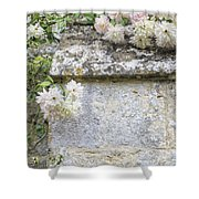 English Roses Vi Shower Curtain