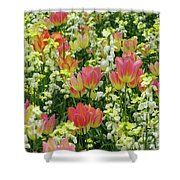 English Spring Shower Curtain