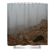 Engulfing  Shower Curtain