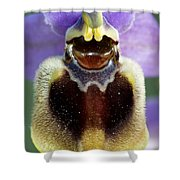 Enigma Of Outer World Shower Curtain