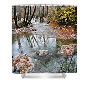 Enipeas In Autumn Shower Curtain
