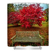 Enjoy The View Shower Curtain