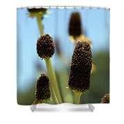 Enjoy Your Own Beauty Shower Curtain