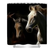 Enlightened Equestrian Shower Curtain