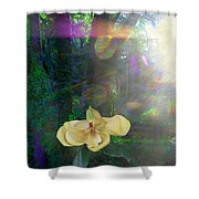 Enlightened Magnolia Shower Curtain