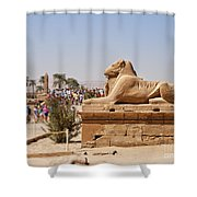 Entrance Sculpture By The Temple Of Karnak Shower Curtain