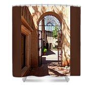 Entrances Shower Curtain