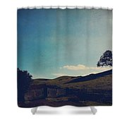 Entrances Shower Curtain