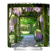 Entranceway To Fantasyland Shower Curtain by Susan Maxwell Schmidt