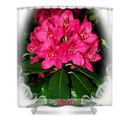Ephesians 1 7 Shower Curtain