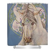 Epona The Great Mare Shower Curtain