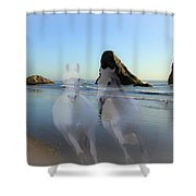 Equine Beach II Shower Curtain