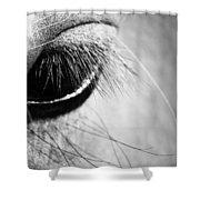 Equine Eye Shower Curtain