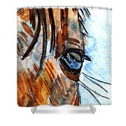 Equine Reflection Shower Curtain