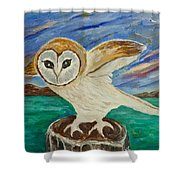 Equinox Owl Shower Curtain