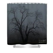 Erie Arbor Elder Shower Curtain