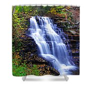 Erie Falls Vertical Panoramic Shower Curtain
