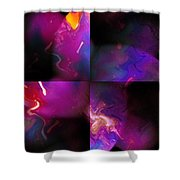Erotic Forms Shower Curtain