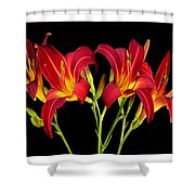Erotic Red Flower Selection Romantic Lovely Valentine's Day Print Shower Curtain