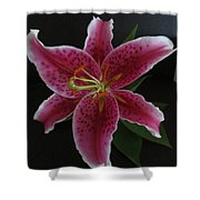 Ester Lily Shower Curtain