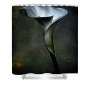 Essence Glow Of A Calla Lily Shower Curtain