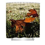 Essence Of Autumn Shower Curtain
