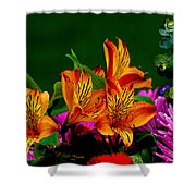 Essence Of Joy Shower Curtain