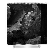 Essence Of My Soul In Black And White Shower Curtain
