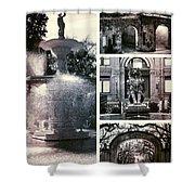 Essence Of Savannah Shower Curtain