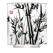Essence Of Strength Shower Curtain