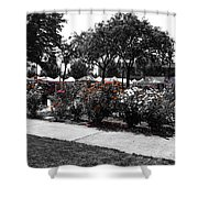 Esther Short Park Rose Garden Shower Curtain