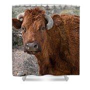 E.t. Highway Bull Shower Curtain