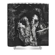 Etched In Time Shower Curtain