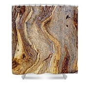 Eucalyptus Bark Shower Curtain