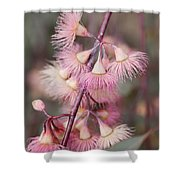 Eucalyptus Bloom Shower Curtain