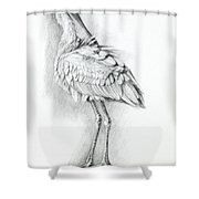 Eurasian Spoonbill - Platalealeucorodia Shower Curtain