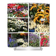 European Flower Market Collage Shower Curtain