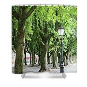 European Park Trees Shower Curtain
