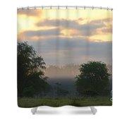 Evaporation Shower Curtain