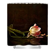 Even Though A Flower Fades Shower Curtain