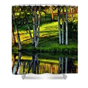 Evening Birches Painted Shower Curtain