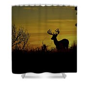 Evening Buck Shower Curtain