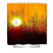 Evening Dunes Shower Curtain
