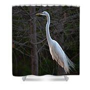 Evening Egret 2 Vertical Shower Curtain
