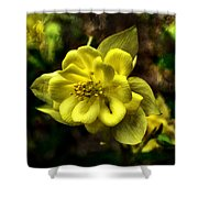 Evening Floral Shower Curtain