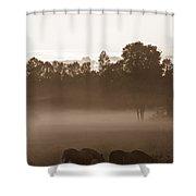 Evening Fog Shower Curtain