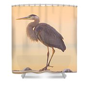 Evening Heron - Colorful Pastel Shower Curtain